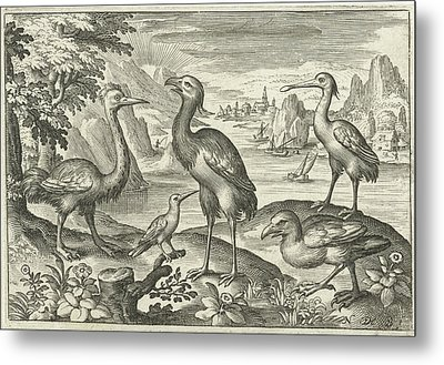 Five Birds Including Spoonbill, Nicolaes De Bruyn Metal Print by Nicolaes De Bruyn