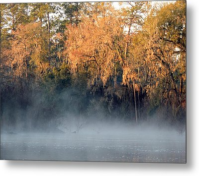 Metal Print featuring the photograph Flint River 14 by Kim Pate