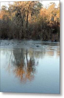 Metal Print featuring the photograph Flint River 17 by Kim Pate
