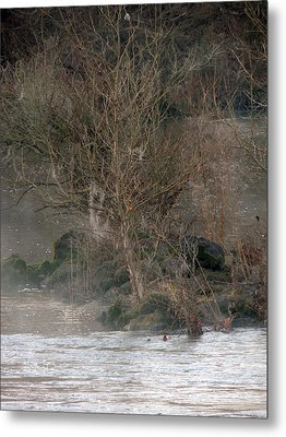 Metal Print featuring the photograph Flint River 19 by Kim Pate
