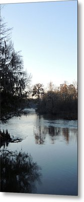 Metal Print featuring the photograph Flint River 23 by Kim Pate