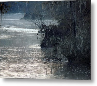 Metal Print featuring the photograph Flint River 28 by Kim Pate