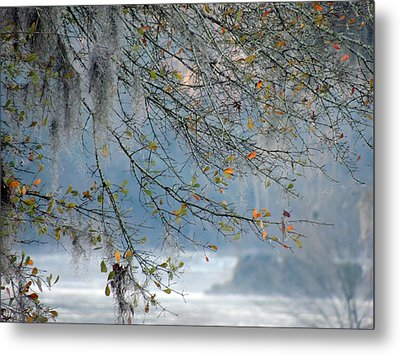 Metal Print featuring the photograph Flint River 29 by Kim Pate