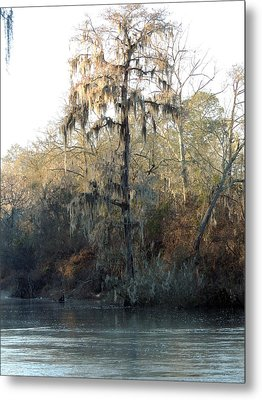Metal Print featuring the photograph Flint River 30 by Kim Pate
