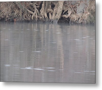 Metal Print featuring the photograph Flint River 6 by Kim Pate