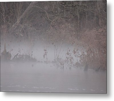 Metal Print featuring the photograph Flint River 7 by Kim Pate