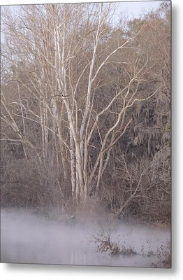 Metal Print featuring the photograph Flint River 9 by Kim Pate