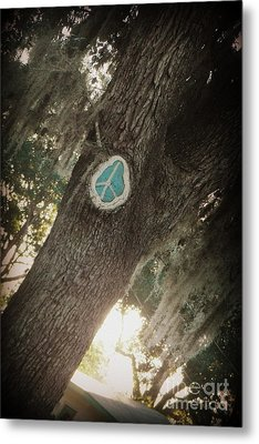 Metal Print featuring the photograph Florida Peace by Valerie Reeves