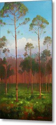 Florida Pines Metal Print by Keith Gunderson