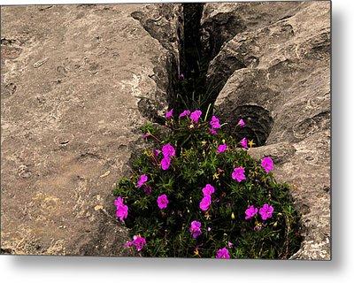 Flowers In Stone Metal Print