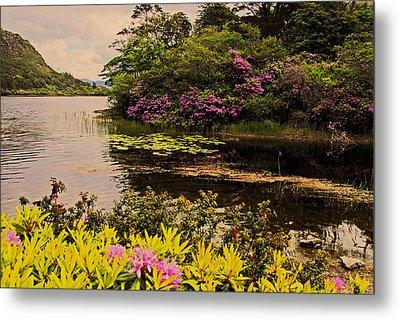 Flowers Of Ireland Lakes Metal Print