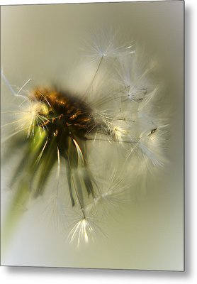 Fly Away Metal Print by Camille Lopez
