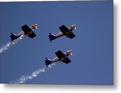 Metal Print featuring the photograph Flying Bulls by Ramabhadran Thirupattur