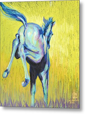 Foal At Play Metal Print by Sally Buffington