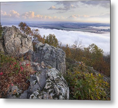 Fog Over Valley Petit Jean State Park Metal Print by Tim Fitzharris