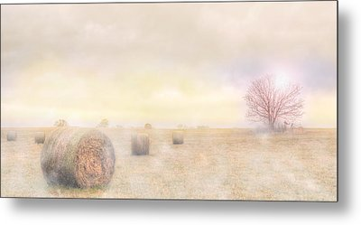 Foggy Morning In Sc Metal Print by Brent Craft
