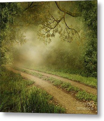 Foggy Road Photo Metal Print by Boon Mee