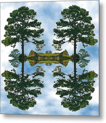 Forest For The Trees Metal Print by Wendy J St Christopher