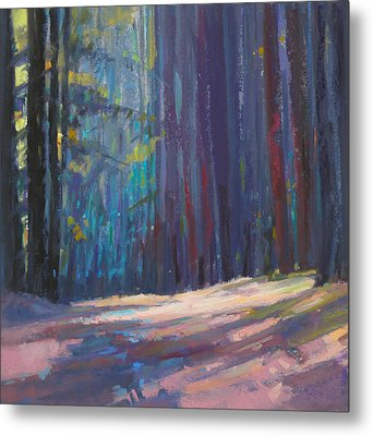 Forest Light Metal Print by Ed Chesnovitch