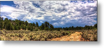 Forest Road Metal Print by William Wetmore