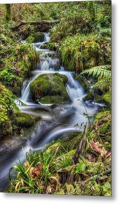 Forest Stream V2 Metal Print