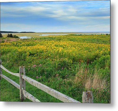 Fort Hill Area Cape Cod  Metal Print