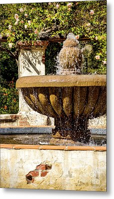 Fountain Of Beauty Metal Print by Peggy Hughes