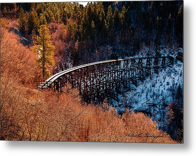 Metal Print featuring the photograph From Fire To Ice by Allen Biedrzycki