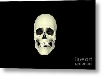 Front View Of Human Skull Metal Print by Stocktrek Images
