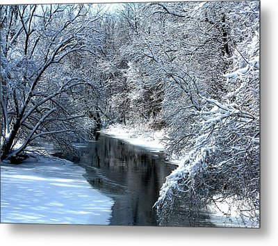 Frosted Creek Metal Print