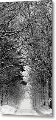 Frosted Steps II Metal Print by Sarah Boyd