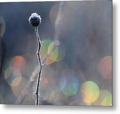 Frozen Orb Metal Print by Paul Noble