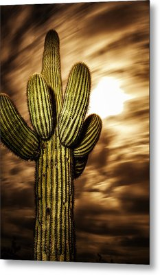 Metal Print featuring the photograph Full Moon Saguaro by Anthony Citro