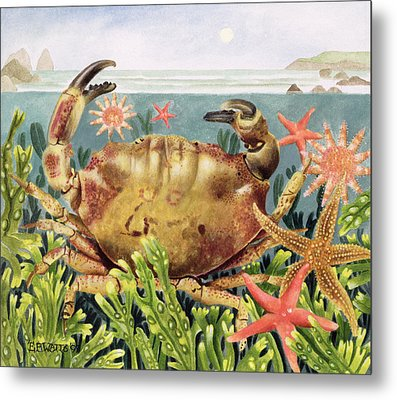 Furrowed Crab With Starfish Underwater Metal Print