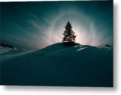 Fv4157, Will Datene Pine Tree On A Hill Metal Print by Will Datene