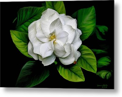 Gardenia Metal Print by Sharon Beth