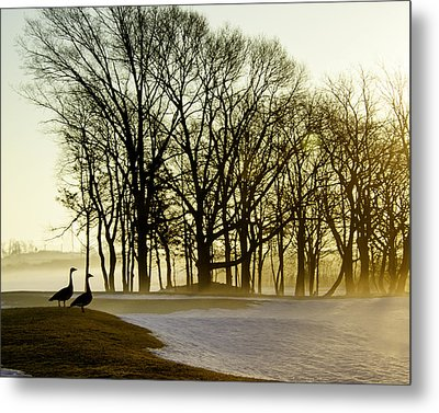 Geese Watching The Sunrise Metal Print by Vicki Jauron