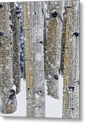 Gently Falling Forest Snow Metal Print by Don Schwartz