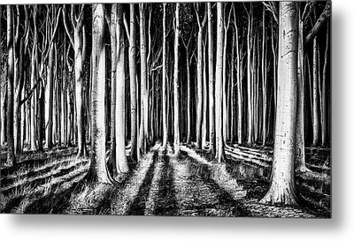 Ghost Forest Metal Print