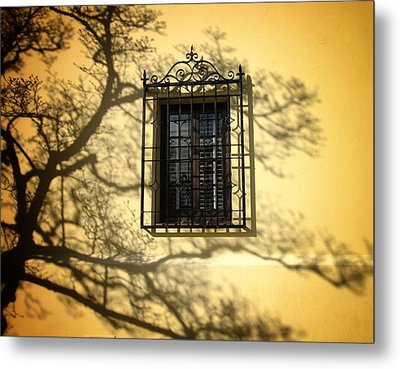 Ghost Tree Metal Print by Mary Ann Southern