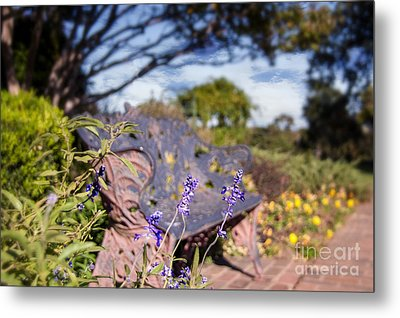 Gilcrease House Garden Flower Metal Print by Tamyra Ayles