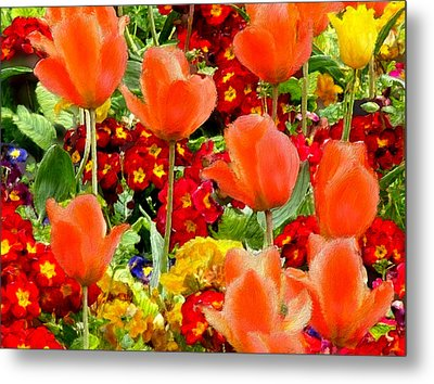 Glorious Garden Metal Print by Bruce Nutting