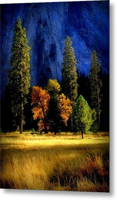 Glowing Trees Metal Print