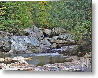 God's Beauty Metal Print by Butch Phillips
