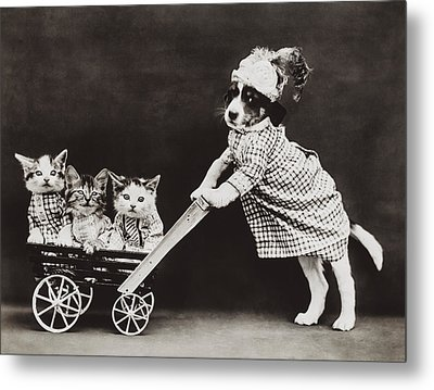 Going For A Stroll Metal Print by Aged Pixel