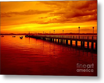 Golden Nature Metal Print by Boon Mee