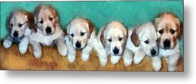 Golden Puppies Metal Print by Michelle Calkins