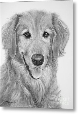 Golden Retriever Sketch Metal Print