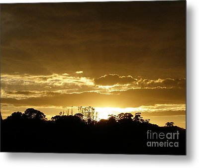 Metal Print featuring the photograph Golden Sunrise by Bev Conover