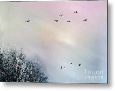 Goose Flight Metal Print by Hannes Cmarits